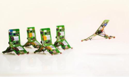 Robot Ants